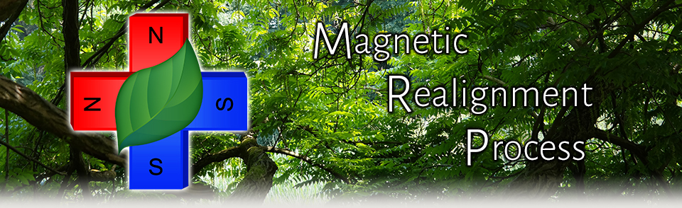 Magnetic Realignment Process